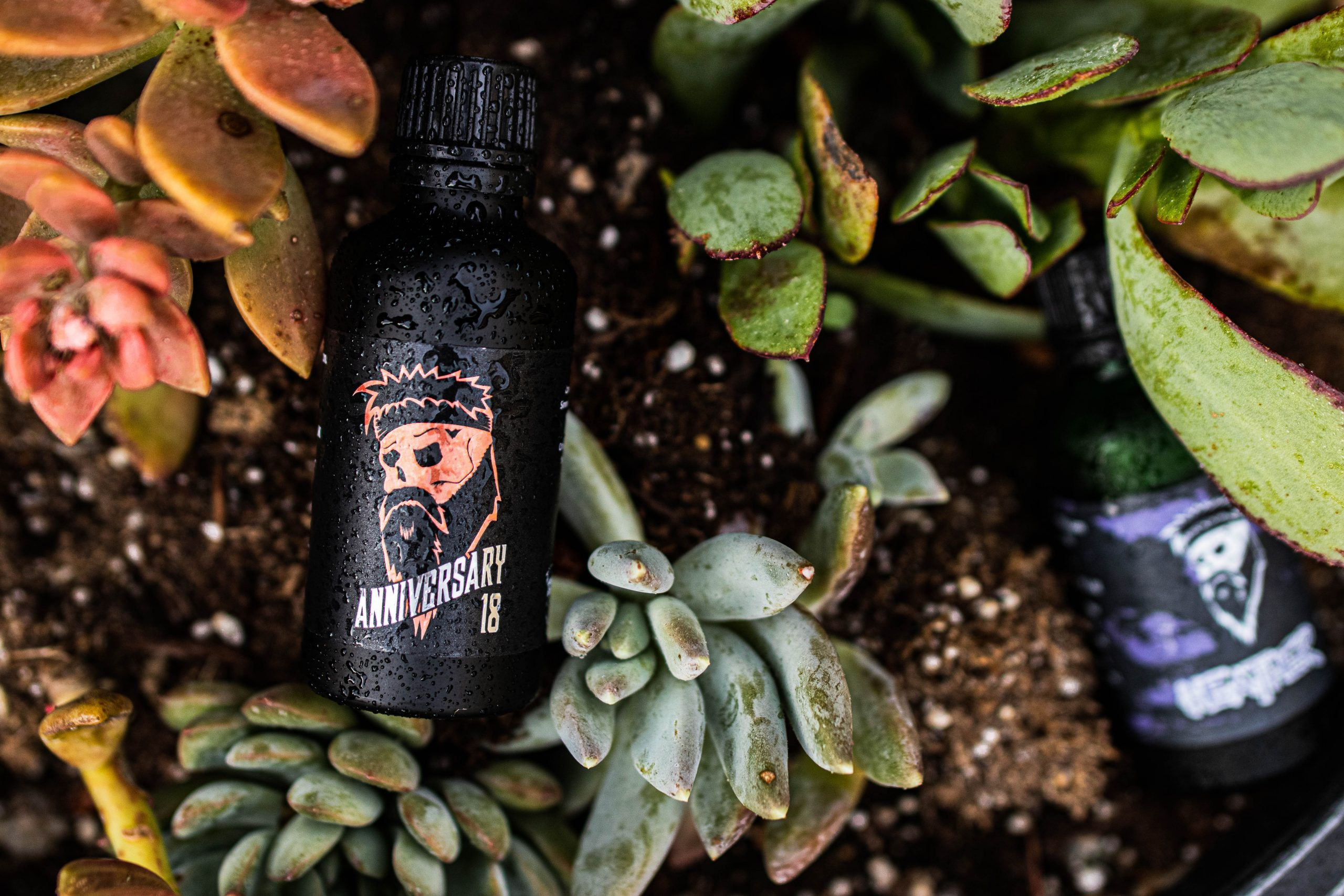 Which Beard Oil Smells The Best?